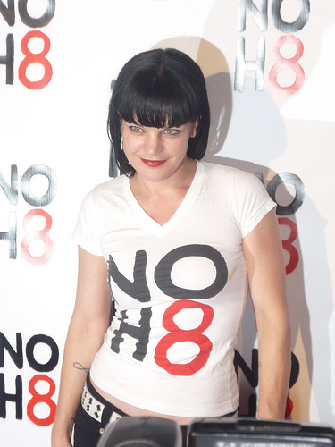 Pauley Perrette Tweets Hints Of Crimes On NCIS Departure