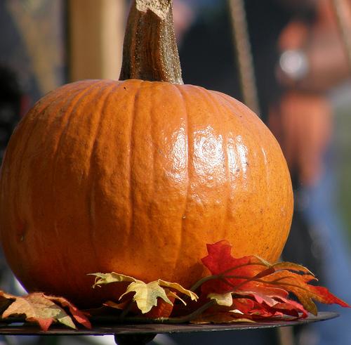 Five Health Benefits of Pumpkin