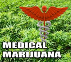Governor Rauner Okays Medical Marijuana In Schools