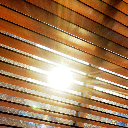 Opening Your Shades in the Morning Kills Bacteria in Household Dust