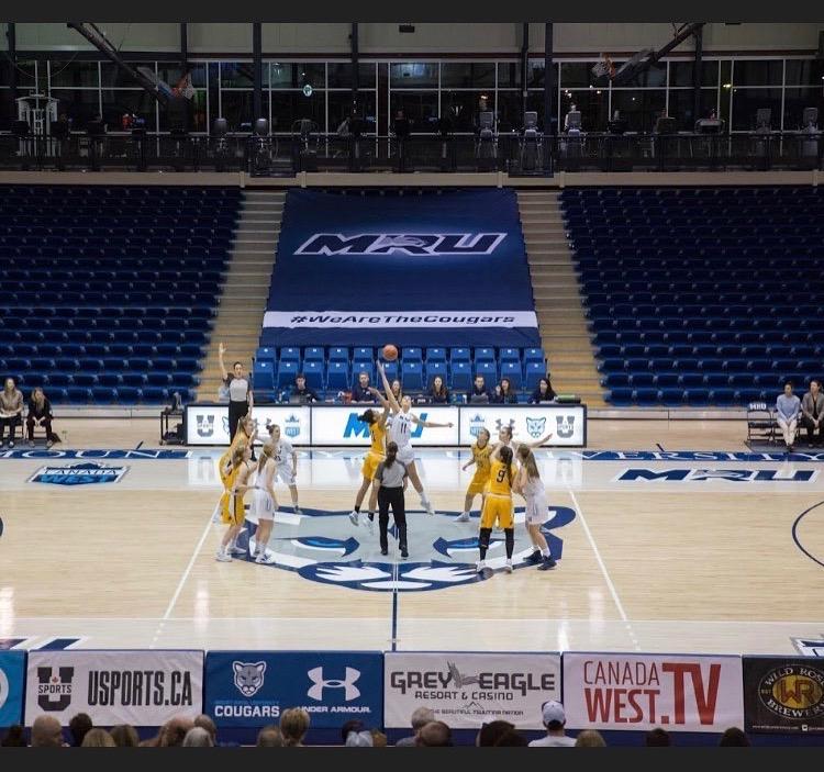 Cougars Basketball Season Preview