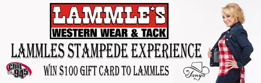 Lammles Stampede Experience