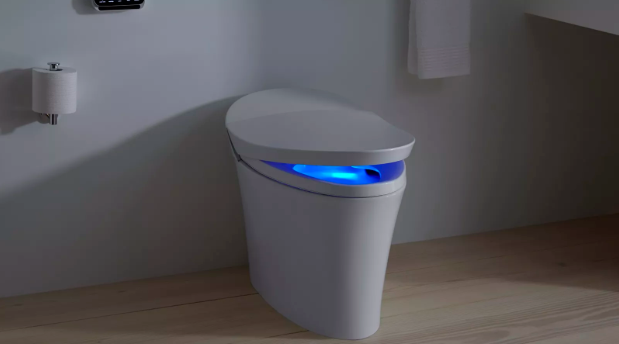 Behold!  The Toilet of the Future... today!