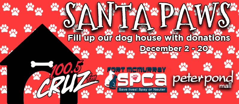 Santa Paws - Stuff the Dog House!