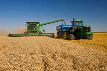 Harvest in Sask mostly stalled by cool wet weather