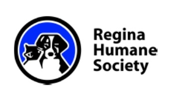 Regina Humane Society reminds animal owners to prepare pet emergency kits