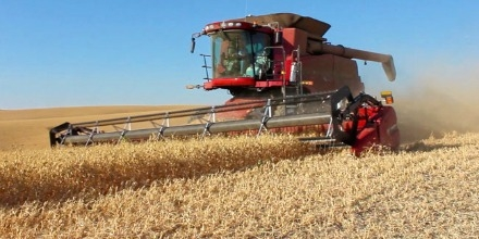 Combining has started in small pockets of Southern Saskatchewan