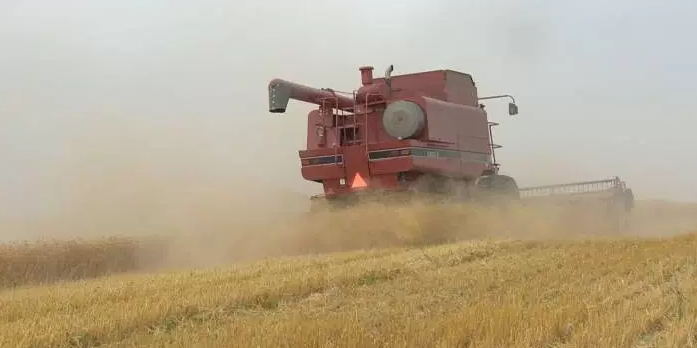 Sask harvest reaches 92 percent complete