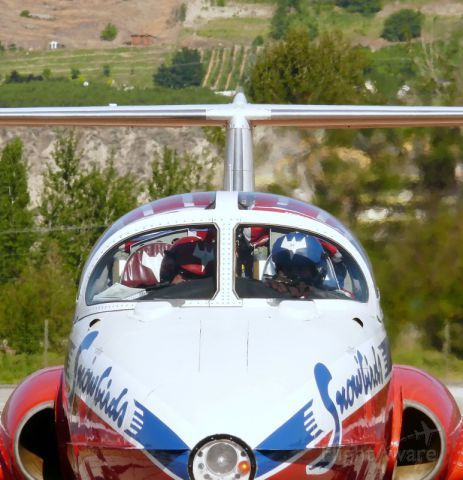 Snowbirds cancelling some performances citing more training time needed for pilots