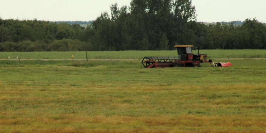 Widespread rain expected to boost Saskatchewan farm economy