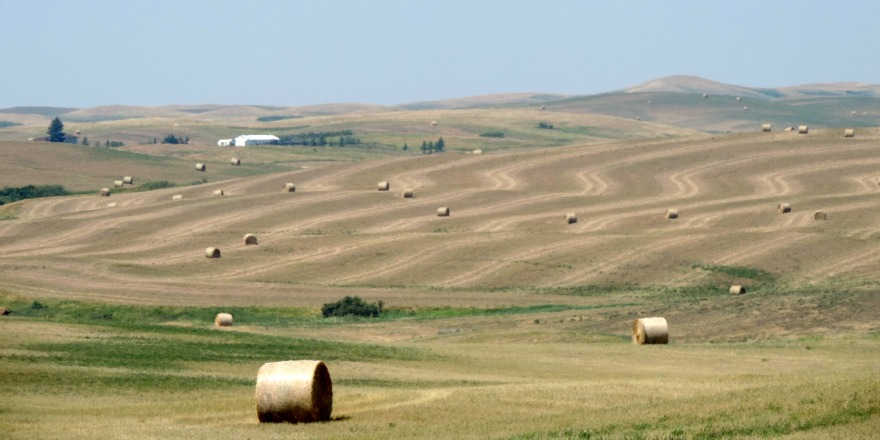 Once again a dry growing season is expected across southern Saskatchewan