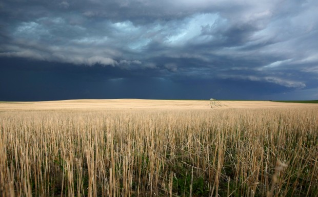 SW Sask could be hit by severe weather Saturday night