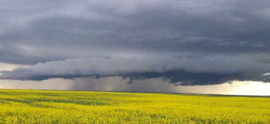 Thunderstorm watches and warnings out for extreme SE corner of Saskatchewan