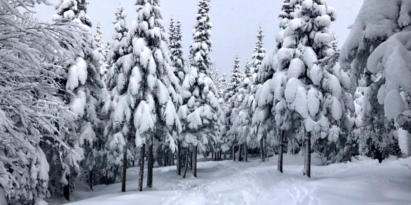 More snow on the way for southern Saskatchewan