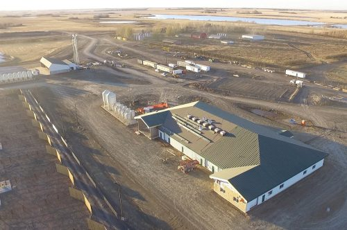 A&W invests in new livestock and forage centre at University of Saskatchewan