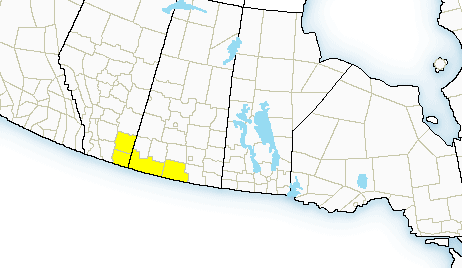 Severe thunderstorm watches in place for southwest and south central Sask.