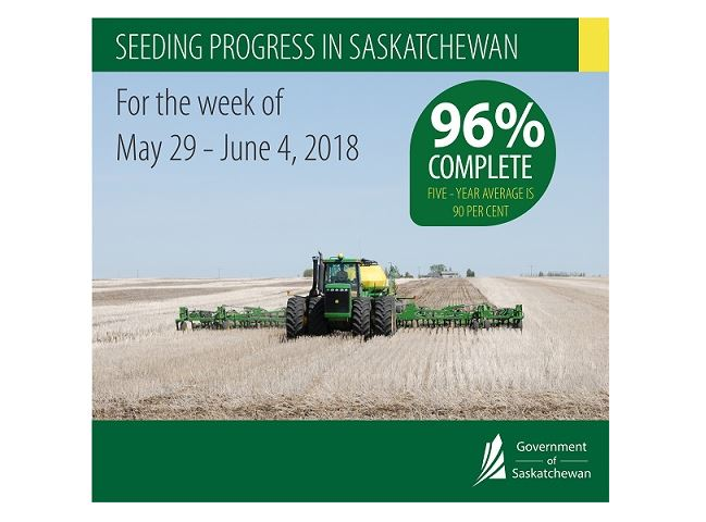 Latest crop report says soil moisture conditions vary greatly across Saskatchewan