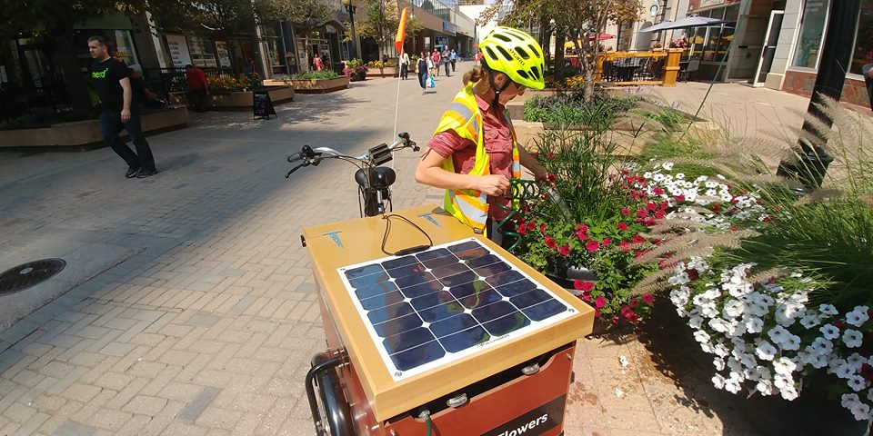 New watering-trike being tested in downtown Regina