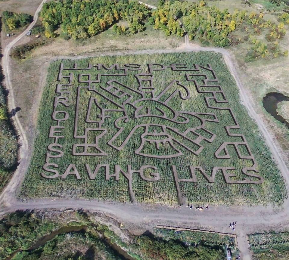 Happy Hollow honours Lumsden Fire Department with special corn maze design