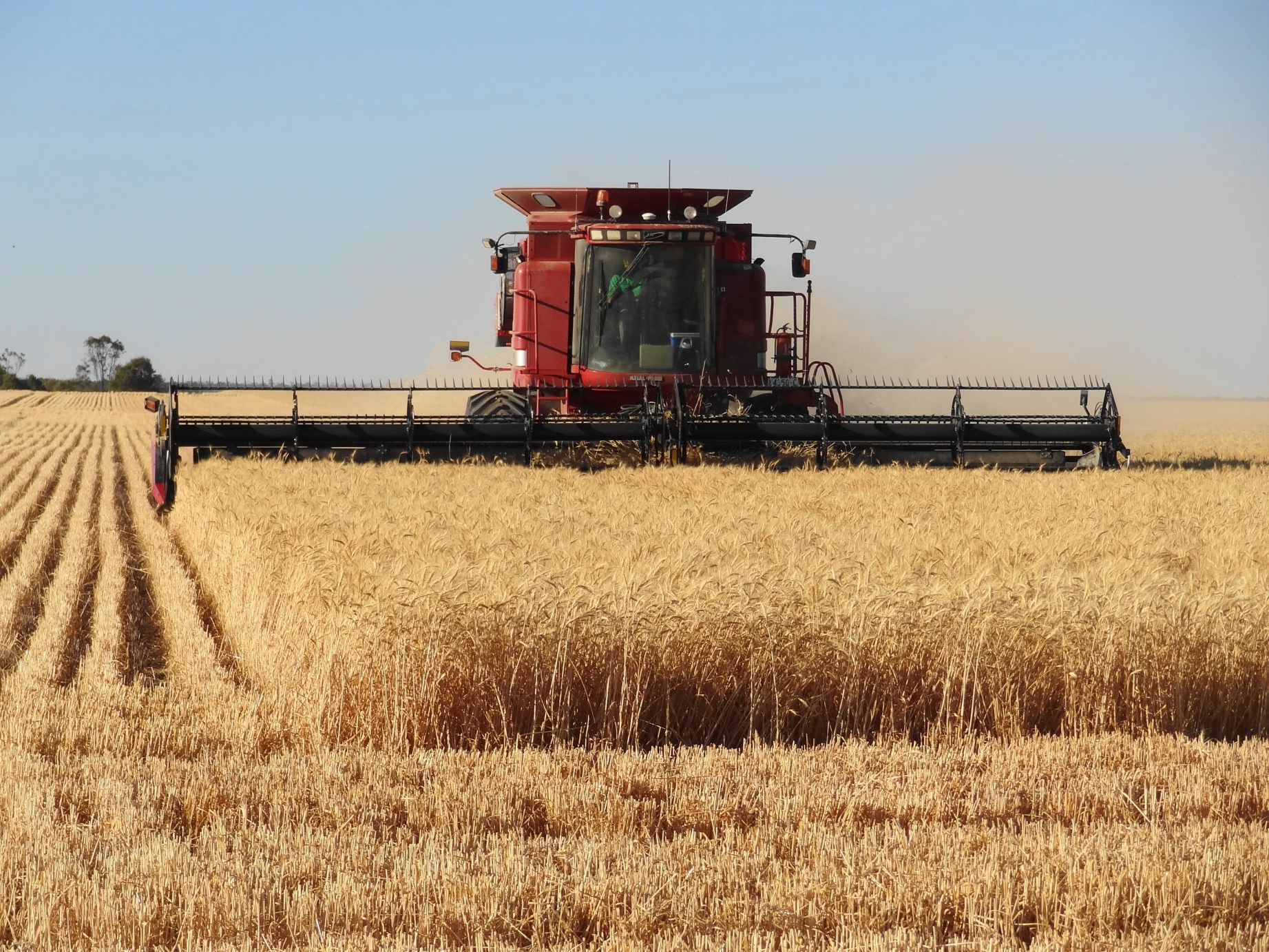 Warmer weather is on the way for stalled Saskatchewan harvest