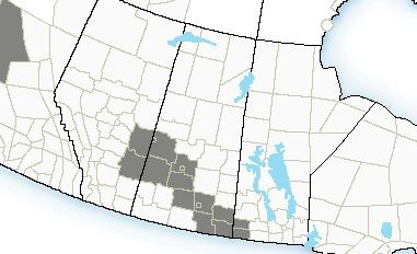 Another day of Fog Advisories across central and southern Saskatchewan