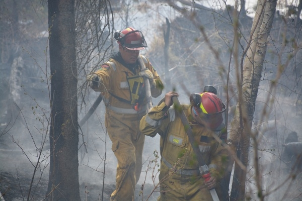 Residents can now nominate their Hero from the wildfire