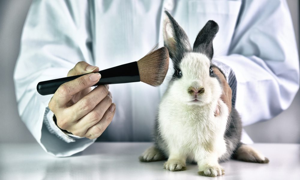 Canada Is Making Cosmetic Testing On Animals Illegal