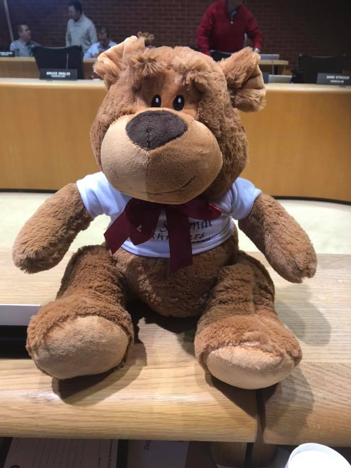 Teddy Bear Campaign Looking To Help With Healthcare Bills For 7-Year-Old Girl