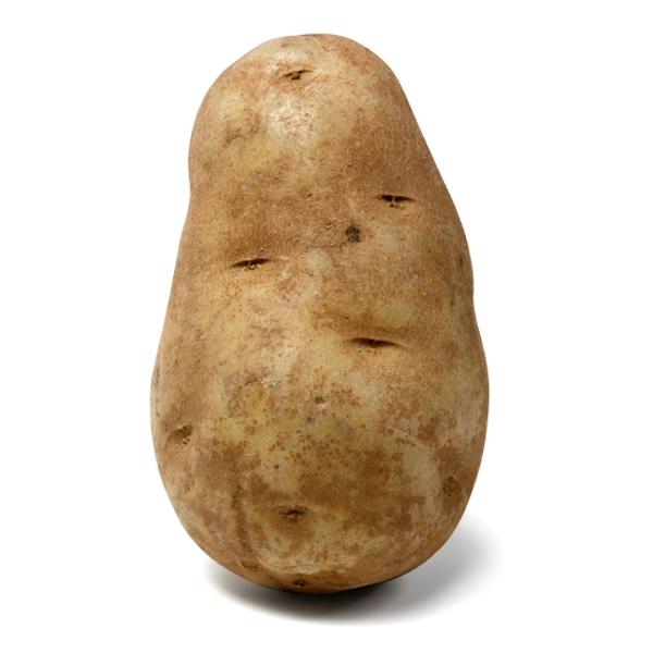 Potato Talk