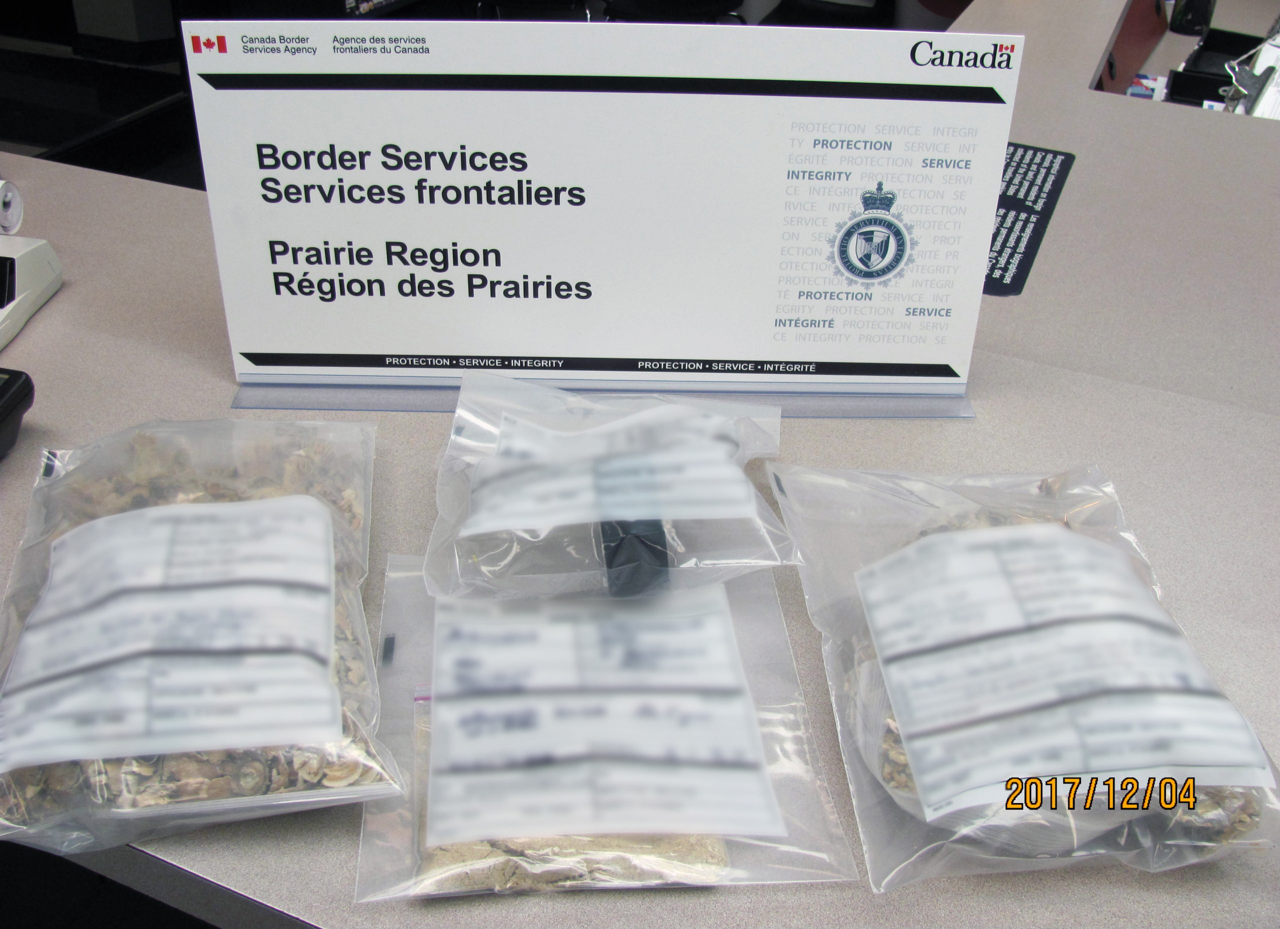 A Drug-Bust at the Canada-U.S.A. Border