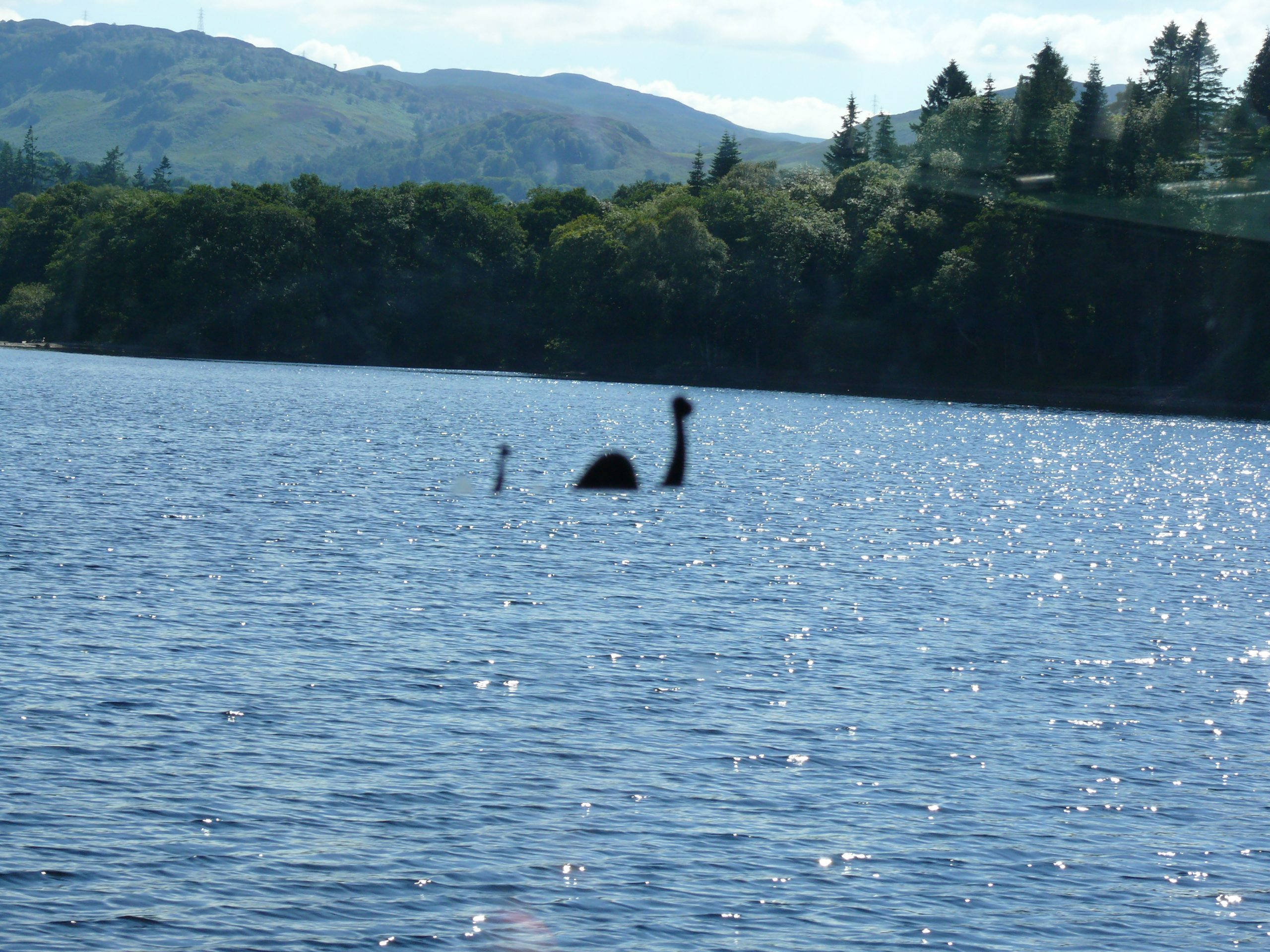 Let's Get Nessie!