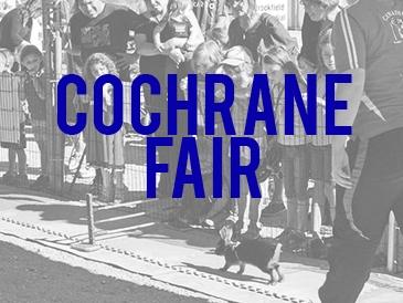 Feature: http://www.cochranefair.com/