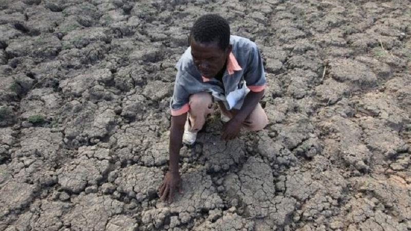 Mugabe's Zanu-PF 'blocking food aid' amid Zimbabwe drought