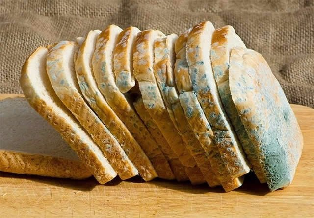 If you've ever picked mold off your bread, this will seriously shock you