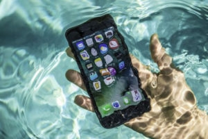 Ways to save your phone when it falls in water