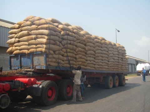 District manager arrested for stealing 405 bags of cocoa