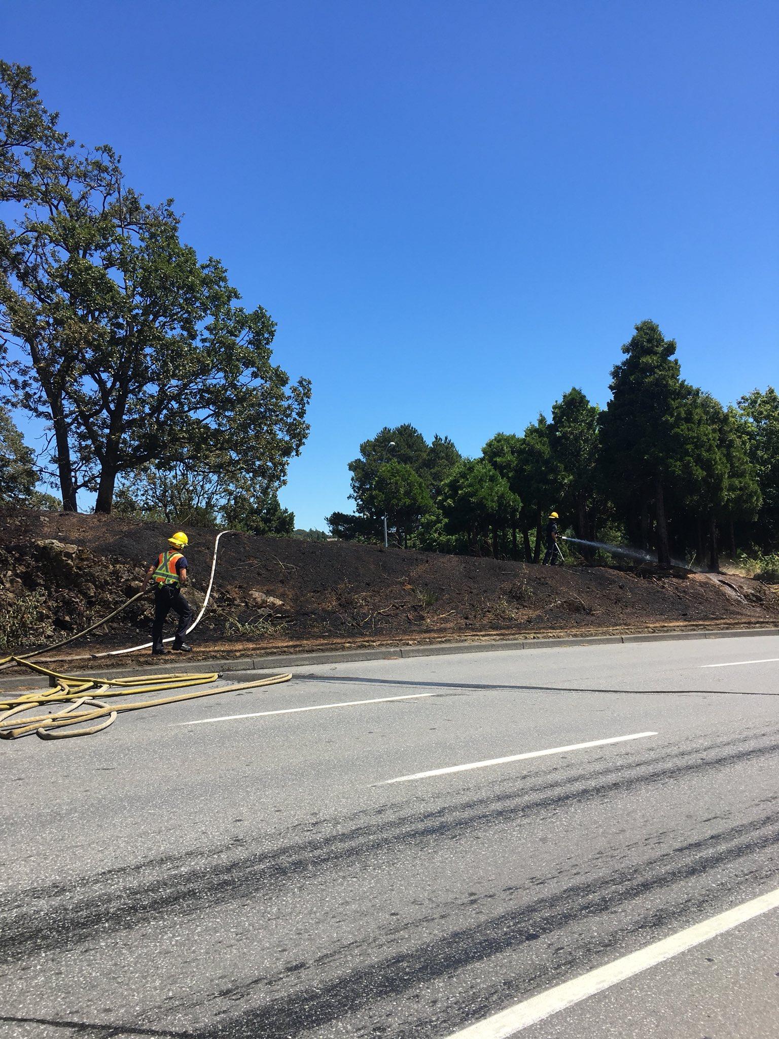 Saanich fire crews put out grass fire on Blanshard St.