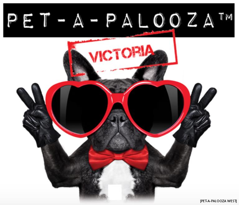 The Q's Rockline Theme Thursday With Scott James 080918 -- Pet-A-Palooza