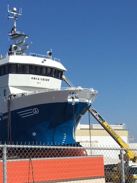 Anti-fish farm protesters on board operational vessel