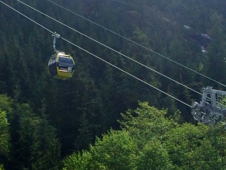 A Gondola on Mt. Finlayson?