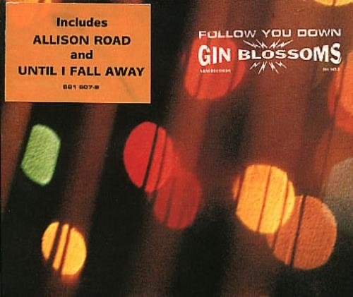 #TBT - Gin Blossoms