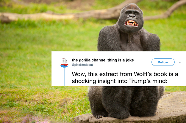 """[Listen] 60s or Less // """"The Gorilla Channel"""""""