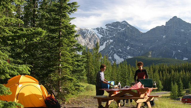 Summer camping reservation set to open