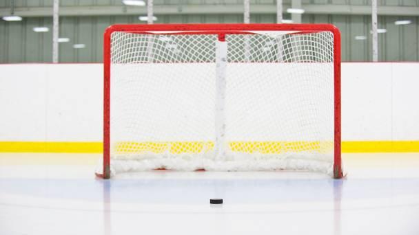NHL recap