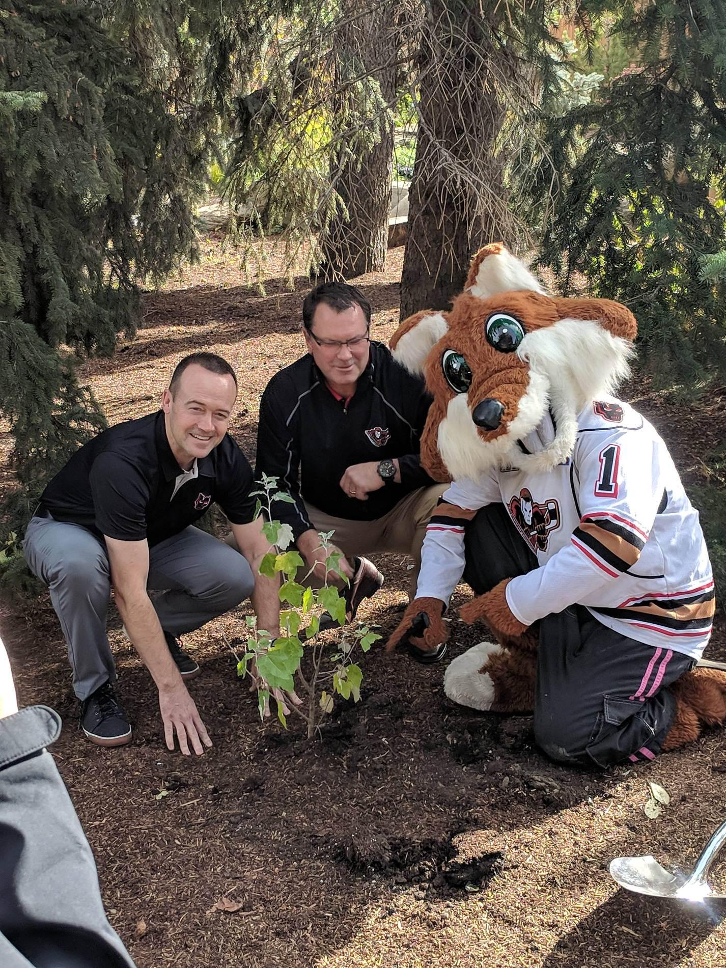 The Calgary Hitmen announce One-Ticket One-Tree initiative