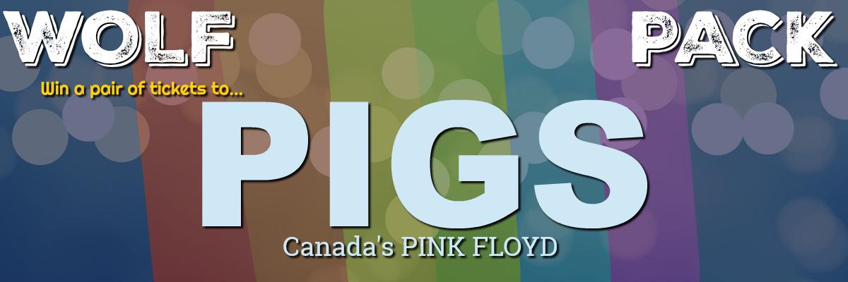PIGS CONTEST