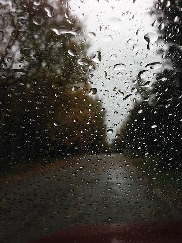 The Rain Continues