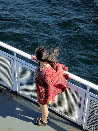 Passenger Ferry Service