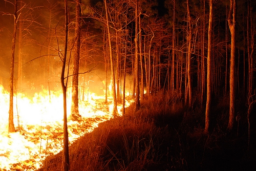 Wildfire Investigation Legislation