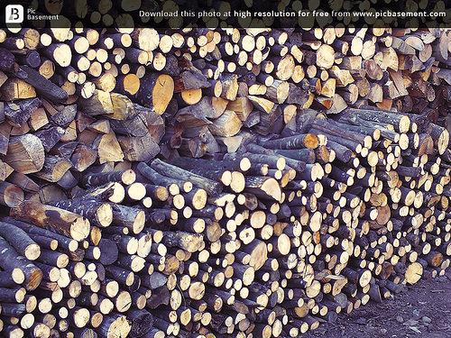 Softwood Lumber Duties